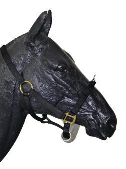 Halter dla konia