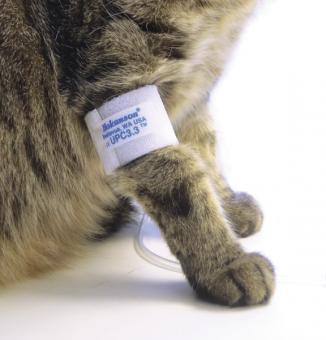 Doppler ultradźwiękowy